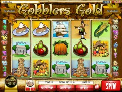 Gobblers Gold слот автоматы slot-77.com Rival 1/5