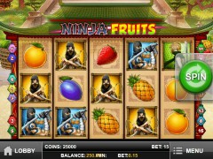 Ninja Fruits - Play'nGo