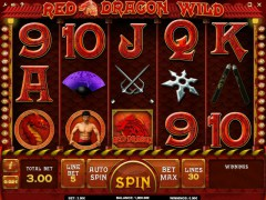 Red Dragon Wild - iSoftBet