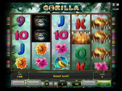 Gorilla слот автоматы slot-77.com Greentube 5/5