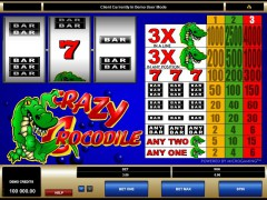 Crazy Crocodile - Microgaming